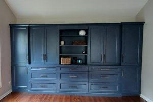 Built in Bookcases Palatine